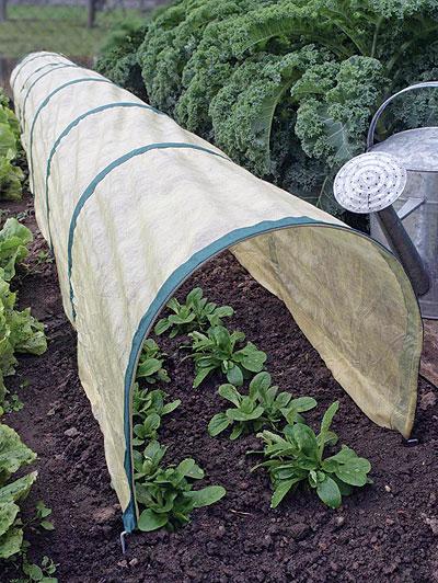 Costruire una piccola serra in plexiglass - Costruire una serra in casa ...