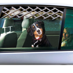 Griglia di ventilazione per cani da auto