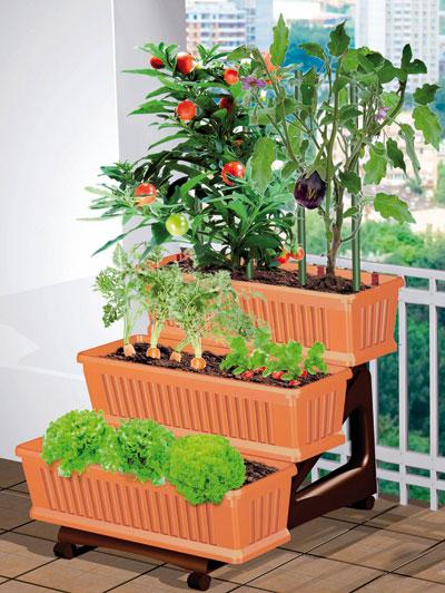 Orto di bama 3 fioriere con sottovasi orto dmail for Fioriere fai da te
