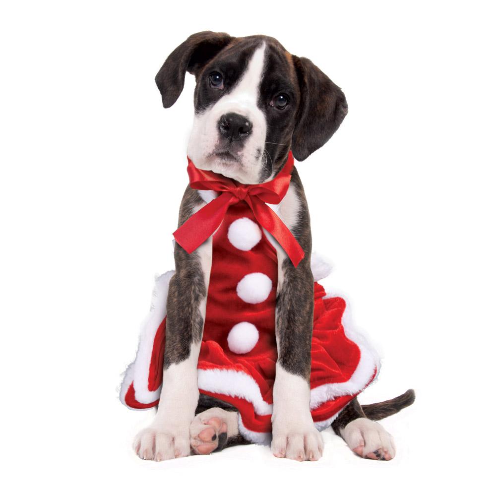 Costume mamma natale per cani natale dmail for Animali a natale